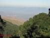 Nkandla forest -  (1)
