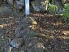 Fort Nottingham grave Hornby family