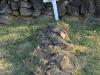 Fort Nottingham grave Mr & Mrs GH Pierce & daughter Elizebeth
