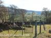 Fort Nottingham grave views (6)