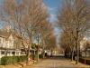 Nottingham-Road-Gowrie-Village-winter-scenes-2