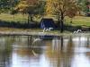 Nottingham Road - Rawdons Hotel - views over dam (2)