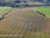 Fort Nottingham area crops (6)