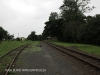 Bothas Hill Railway Station - Rail Lines - R103 - S 29.45.15 E 30.44.40 Elev 741m (58)
