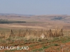 Oliviers Hoek Farm graves (1)