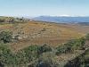 Lake Eland Gorge views (11)
