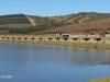 Lake Eland Reserve fishing bashas (2)