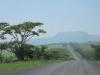 ottos-bluff-mortons-drift-road-1