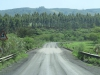 ottos-bluff-mortons-drift-road-6