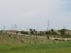 Ottowa - Ottowa Cemetery - R102 - 29.40.934 S 31.01.940 E (1)