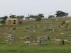 Ottowa - Ottowa Cemetery - R102 - 29.40.934 S 31.01.940 E (2)