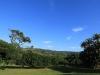 Botha House -  Garden tree & outlook (1)