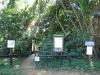 Umdoni Park Environmental Centre -  (4)