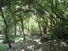 Umdoni Park Environmental Centre -  (6)
