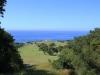 Umdoni Park Golf Course - views of greens (3)