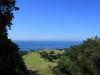 Umdoni Park Golf Course - views of greens (4)