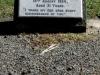 pinetown-church-of-st-john-baptist-military-graves-l-sgt-hennie-rensburg-butler-sap-1934