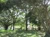 pinetown-kings-road-cemetery-views-s-29-48-47-e-30-51-50-elev-356m-40