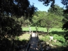 Paradise Valley Reserve - Picnic site (3)