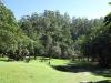 Paradise Valley Reserve - River Walk (2)