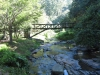 Paradise Valley Reserve - Umbilo River Walk (11)