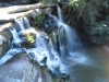 Paradise Valley Reserve - Waterfall & Umbilo River (13)