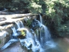 Paradise Valley Reserve - Waterfall & Umbilo River (16)