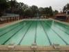 PMB - Alexandra Park Swimming Bath - Pool views (6)
