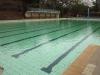 PMB - Alexandra Park Swimming Bath - Pool views (7)