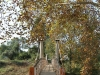 pmb-umsindusi-mcfarlane-footbridge-alexander-park-s-29-36-34-e-30-23-13