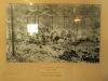 PMB - Allan Wilson Moth Hall - Allan Wilson Last Stand - Photo