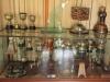PMB - Allan Wilson Moth Hall - Trophy Cabinet
