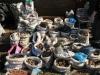 berg-street-boshoff-to-east-st-herbal-cures