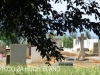 Bishopstowe - St Jakobi Lutheran Kirche - Cemetery -  (5)