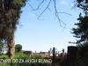 Bishopstowe - St Jakobi Lutheran Kirche - Cemetery -  (6)