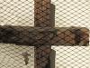 delville-wood-memorial-weeping-cross-leinster-road-5