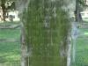 fort-napier-military-cemetery-grave-6653-pte-w-connor-c-coy-2nd-roy-dublin-fus-1898