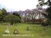 Fort Napier Cemetery Graves  overview (1)