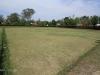 PMB - Allan Wilson Bowling Club & Greens (9)