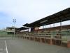 PMB - Kershaw Park Tennis Club - Gladys Rees Stand - 1959 (1)
