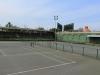 PMB - Kershaw Park Tennis Club - Gladys Rees Stand - 1959 (4)