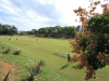 Longmarket Girls School - School Fields (8)
