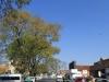 485-longmarket-street-east-to-boshoff-street-22