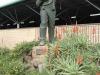pmb-longmarket-street-voortrekker-museum-piet-retief-statue-1870-1838-2