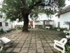 pmb-longmarket-street-voortrekker-museum-trees-1912-3