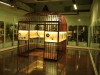 PMB - Loop Street Natural History Museum interior - (11)