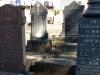 pmb-roberts-road-jewish-cemetary-graves-6