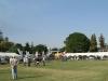 pmb-royal-agricultural-show-livestock-4