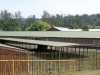 PMB - SAR & H - Goods Sheds - Exchange Road -  (36)