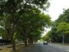 scottsville-durban-road-views-looking-east-16
